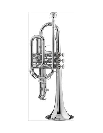 king-student-model-603wsp-cornet