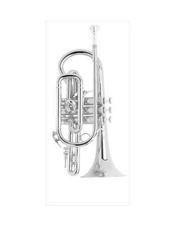bach-professional-model-184sml-cornet