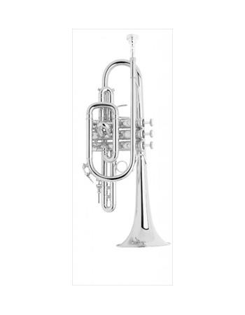 bach-professional-model-181sml-cornet
