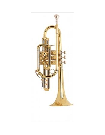 bach-professional-model-181ml-cornet