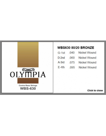 olympia-wbs-630-contra-bass-string