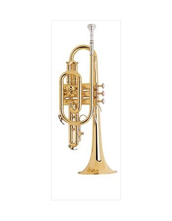bach-student-model-cr301h-cornet