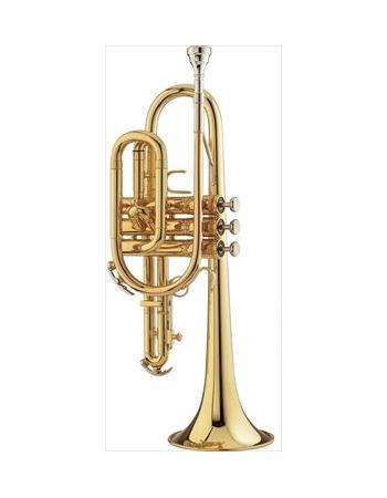 king-student-model-603w-cornet