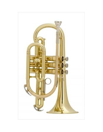 king-student-model-605w-cornet