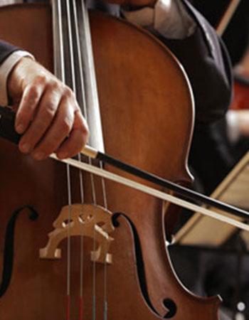string-instruments